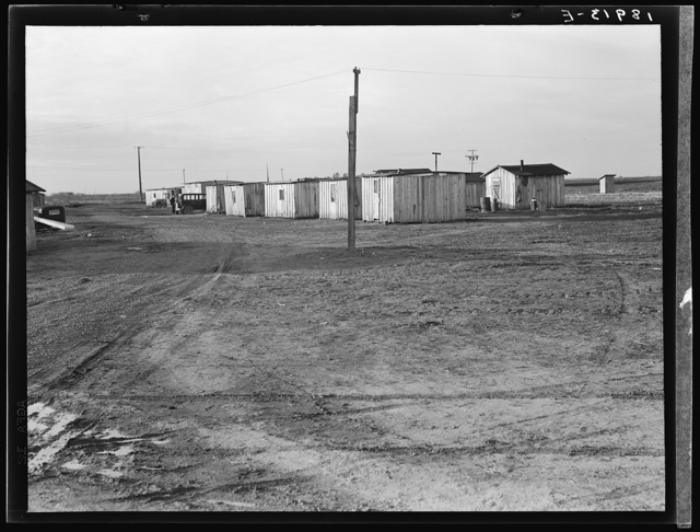 Farm Security Administration (FSA) temporary camp for migrants. Gridley, California. Peak of the season is August