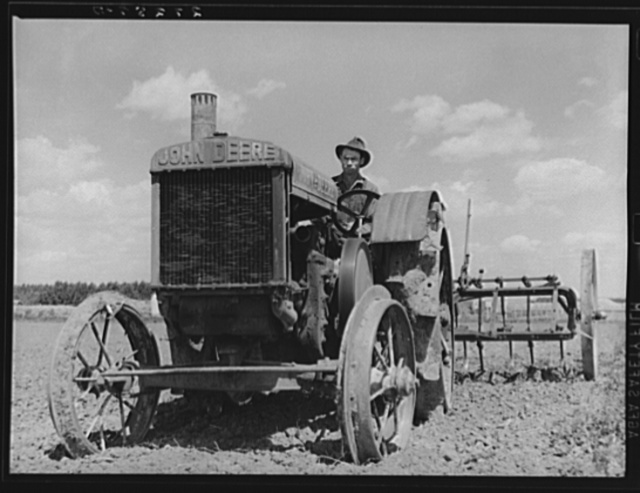 Farmer with tractor. Fairfield Bench Farms, Montana