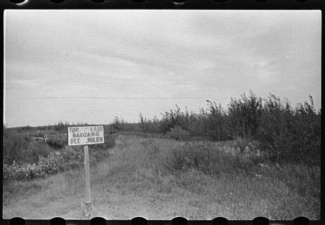 Farmland for sale, Beltrami County, Minnesota
