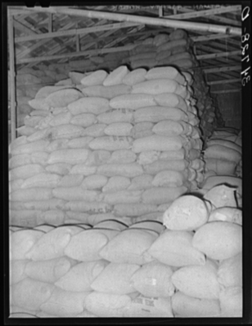 Feed made from peanut shells and blackstrap molasses in storage at peanut-shelling plant. Comanche, Texas