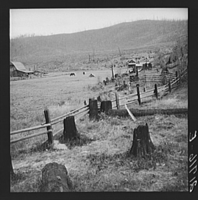 Fenced pasture on cut-over farm. Priest River Valley, Bonner County, Idaho. See general caption 49