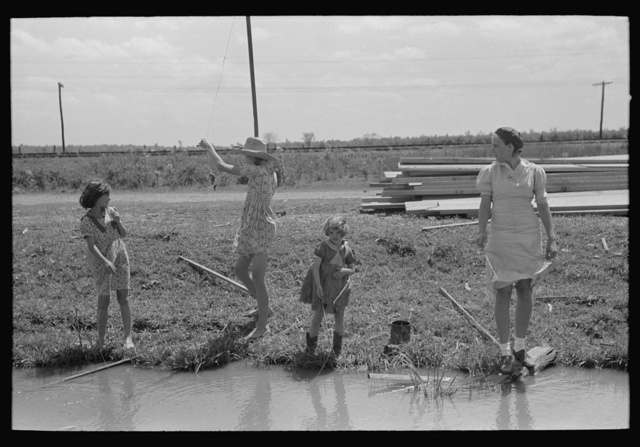 Fishing for crawfish, Opelousas, Louisiana