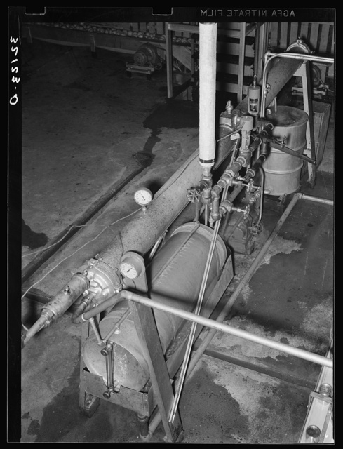 Flash-cooking process used in preparing grapefruit juice for canning. Temperature is carried to 180 degrees, and is attained in a few seconds, thus retaining much of the original flavor. Weslaco, Texas