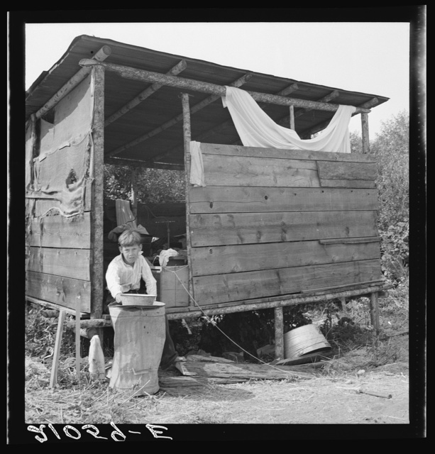 Grower provides fourteen such shacks in a row for his hop pickers. Josephine County, Oregon. Near Grants Pass, Josephine County, Oregon. General caption number 45-11