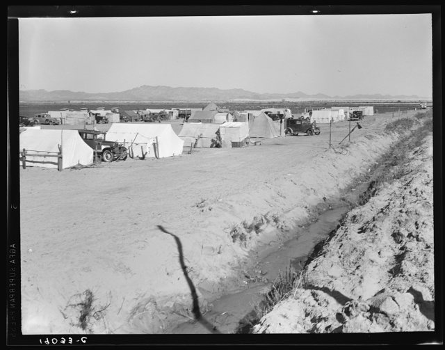 Grower's camp for pickers on large pea ranch along ditch bank. Growers' camps in Imperial Valley and elsewhere have been much improved this year largely because of influence of Farm Security Administion (FSA) migrant camp program. Near Calipatria, Imperial Valley, California