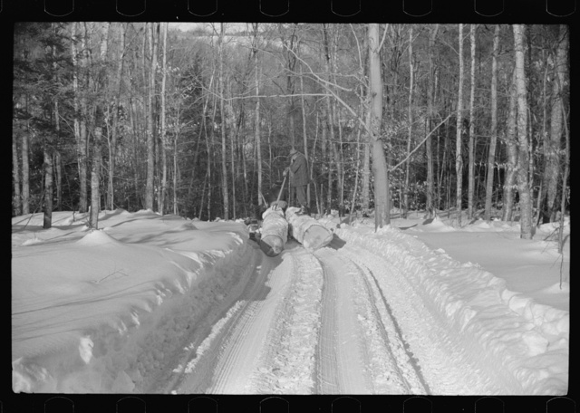 Hauling timber by tractor to the road where it is taken by truck to the mill. Near Barnard, Windsor county, Vermont