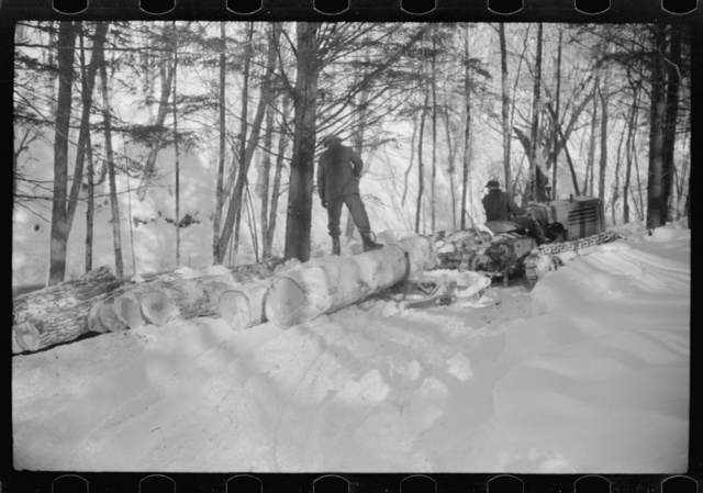Hauling timber by tractor to the road where it is taken by truck to the mill, near Barnard, Windsor County, Vermont