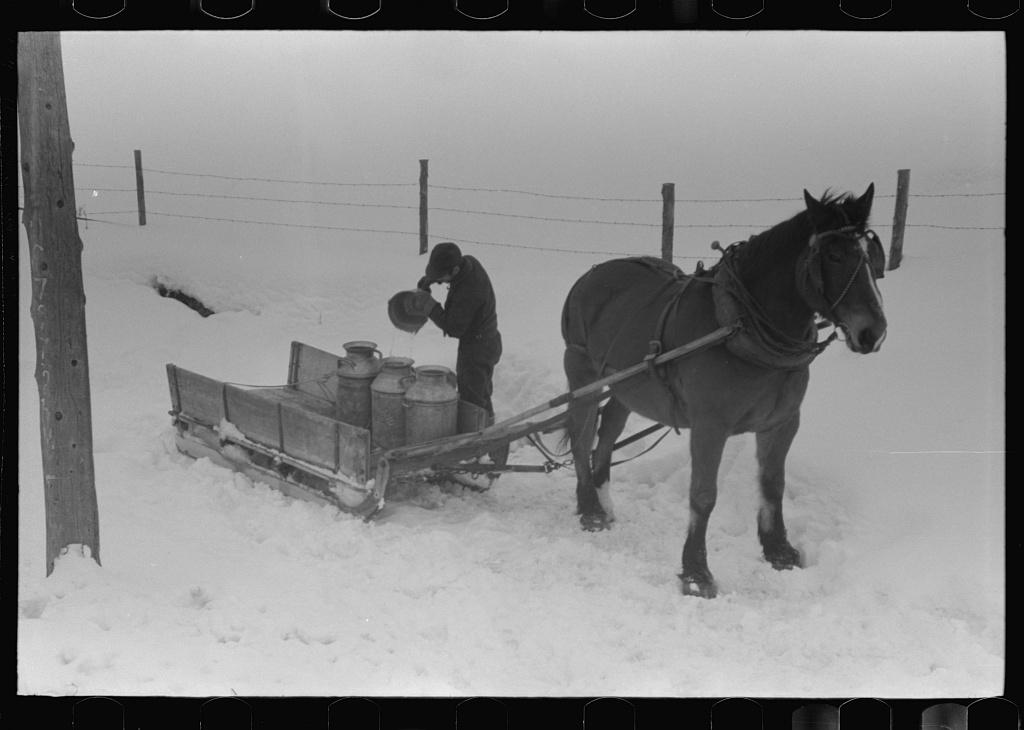 Hauling water in milk cans because usual source of supply is frozen on farm near Barre, Vermont