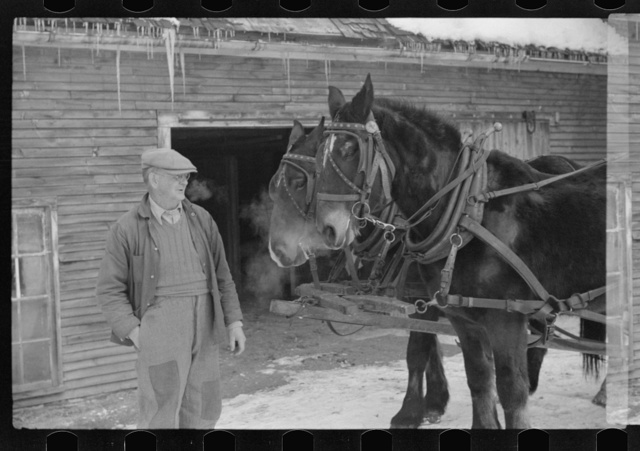 Hired man and team, Putney Homesteads, near Woodstock, Vermont
