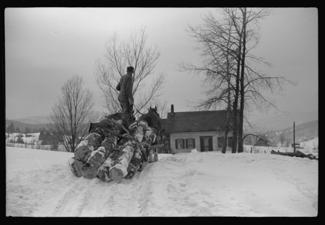 Hired man hauling logs on farm near Waterbury, Vermont