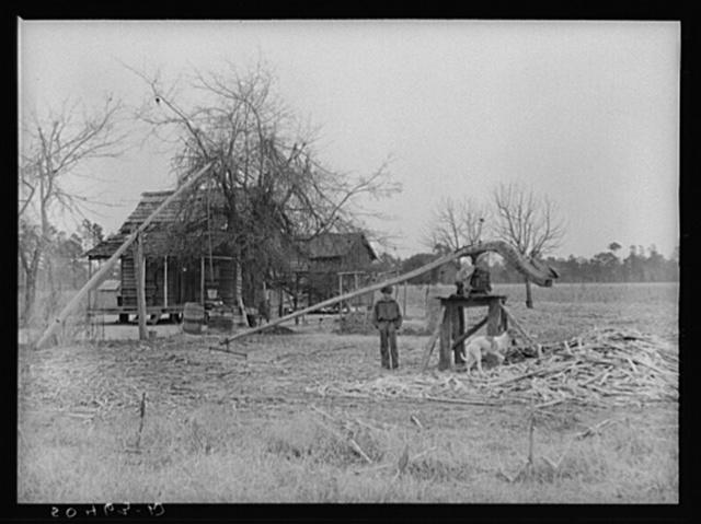 Home of Indian family (brass ankles, mixed breed) near Summerville, South Carolina, with sorghum cane grinder in foreground