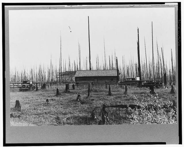 Home of the FSA (Farm Security Administration) borrower who moved on this land six years ago, built log house and buildings. Cut enough hay between the stumps to feed eight cows, three calves and two horses through the winter of 1938. Three hundred and fifteen dollar land-clearing loan. Priest River Peninsula, Bonner County, Idaho. See general caption 49
