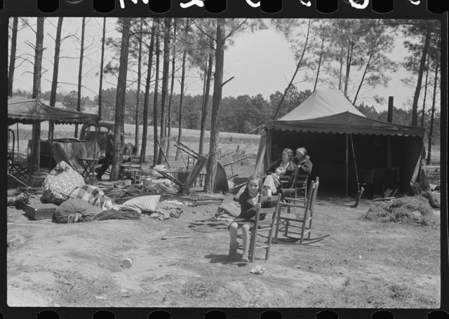 Horse and mule traders from Atlanta set up temporary camp to sell to nearby farmers near Covington, Georgia