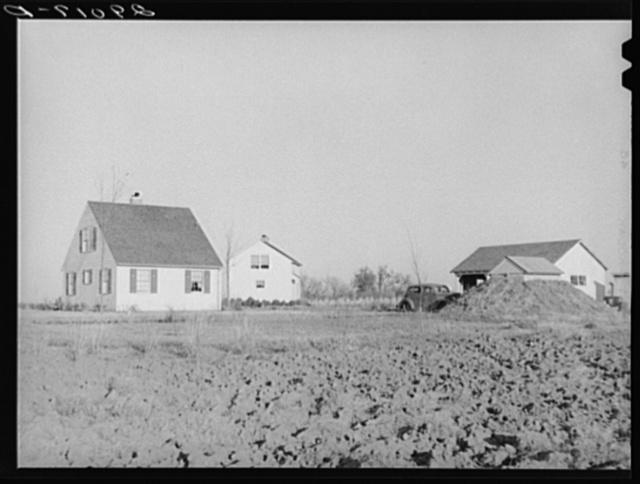 Houses at the Bois d'Arc Cooperative farm. Osage Farms, Missouri