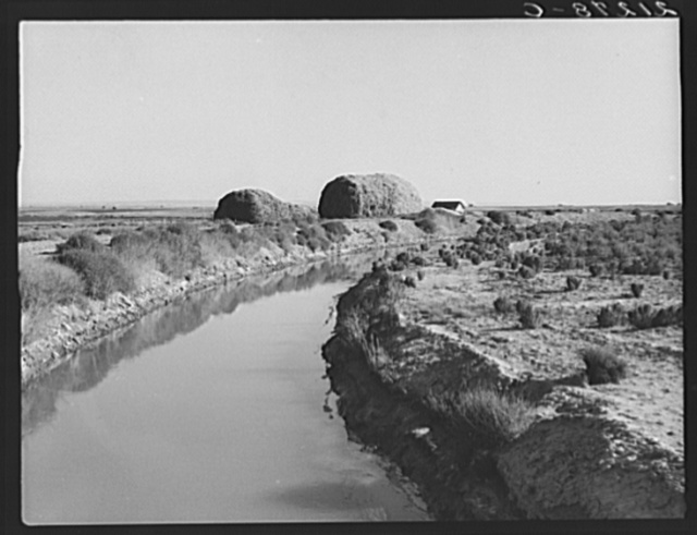 Irrigation canal and the preacher's farm. These large haystacks are characteristic of the country at this period of development. Dead Ox Flat, Malheur County, Oregon
