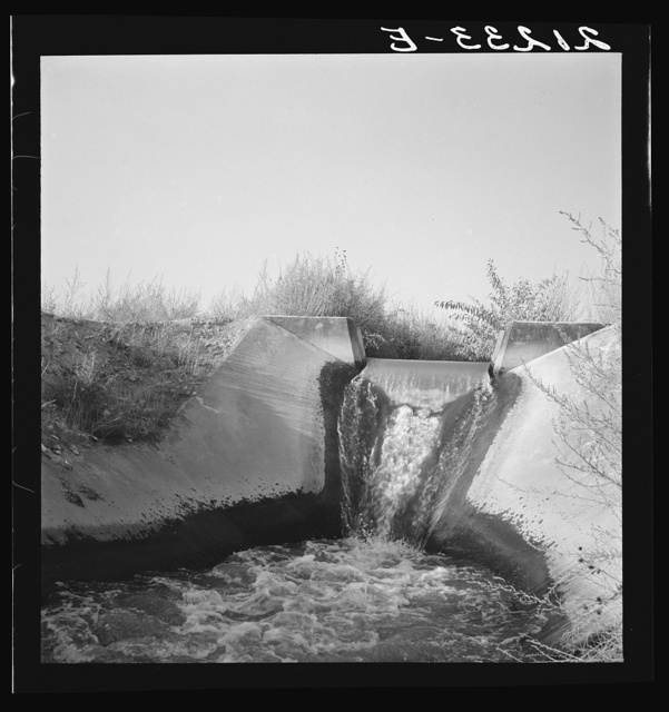 Irrigation canal seven miles west of Nyssa, Malheur County, Oregon