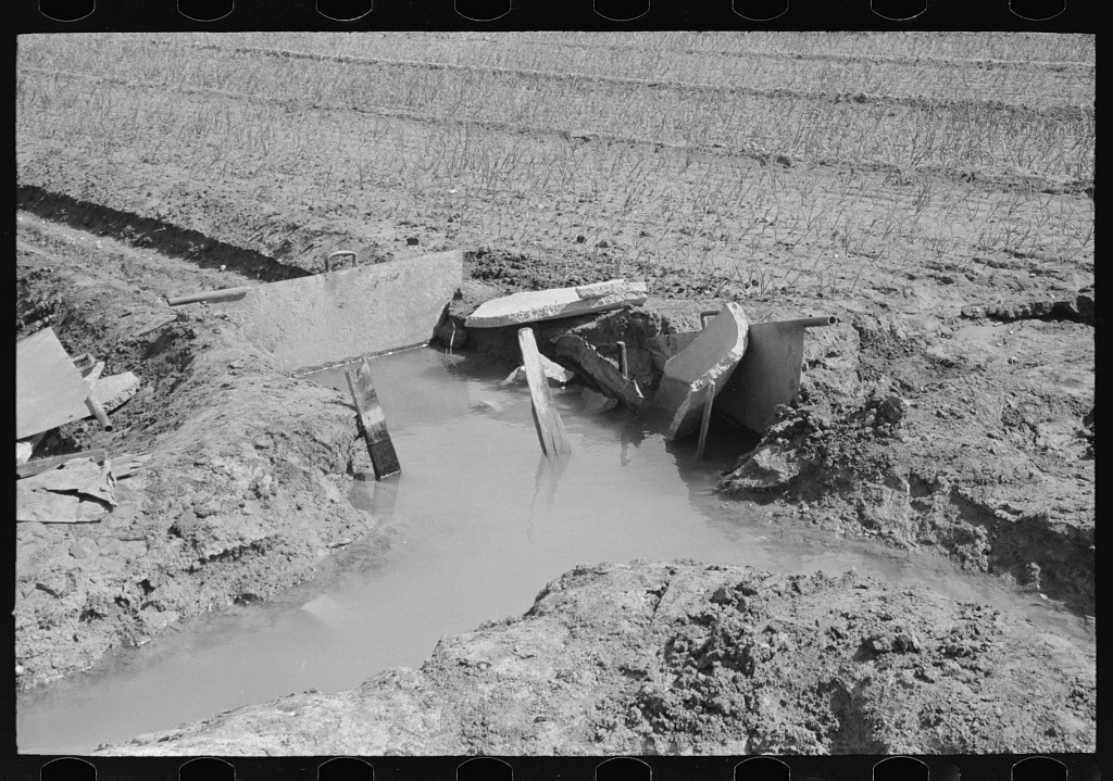 Irrigation in the onion fields near Eagle Pass, Texas