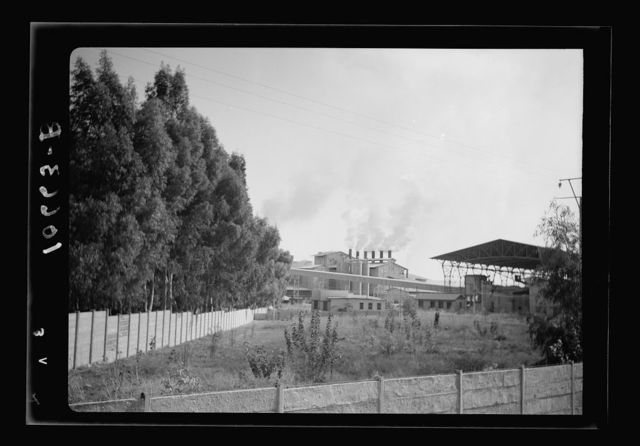 "Jewish factories in Palestine on Plain of Sharon & along the coast to Haifa.Haifa. The ""Nesher"" cement works. Gen[eral] view of the works from the west, farther off"