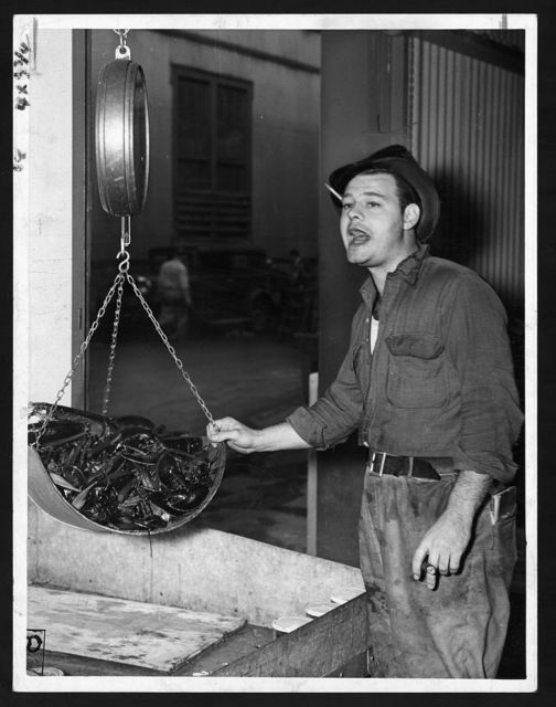 Jimmie Liebl, salesman, shouts code message to bookkeeper in back after a sale of lobsters is made (Eastern Commission Co.) / World Telegram & Sun photo by Edward Lynch.