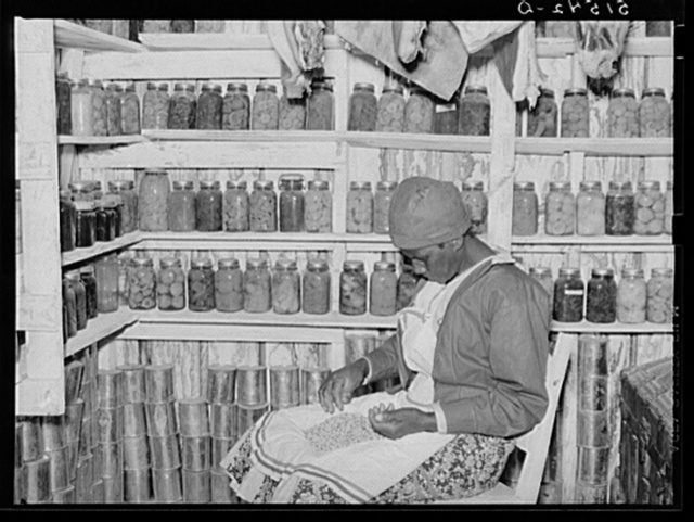 Jorena Pettway sorting peas inside her smokehouse. She still has many fruits and vegetables which she canned last year. Gee's Bend, Alabama