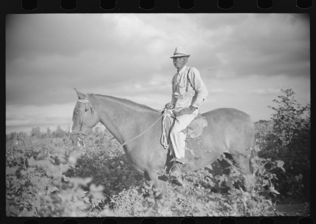 Josh Taylor, Negro foreman who has been on place for fifty-three years. Knowlton Plantation, Perthshire, Mississippi Delta, Mississippi