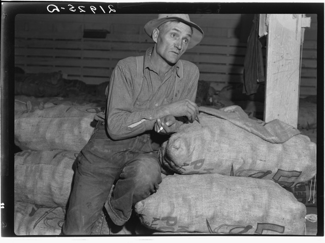"Klamath Basin potato farmer. He remembers when the first carload of potatoes left this valley in 1910. In 1934 he lost thirty-five hundred dollars on forty-eight acres of potatoes. His present acreage is eleven acres in potatoes, the rest in hay and soil-building crops. Has eleven milking cows. ""I'm gonna eat."" Tulelake, Siskiyou County, California"
