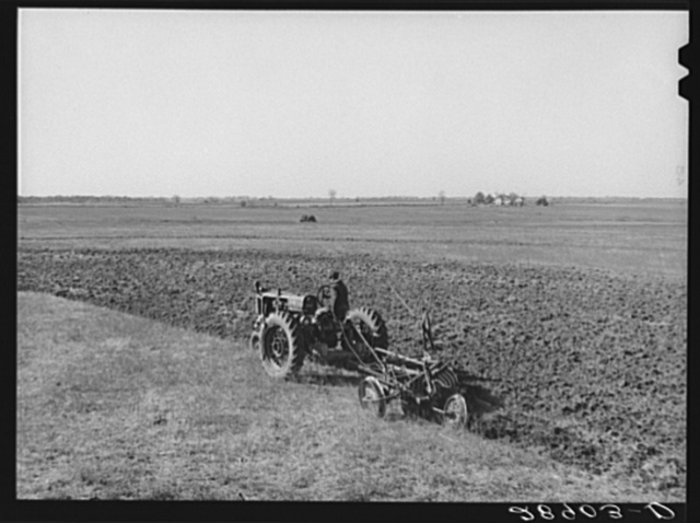 Large scale farming with tractors means greater profits on the Bois d'Arc cooperative. Osage Farms, Missouri