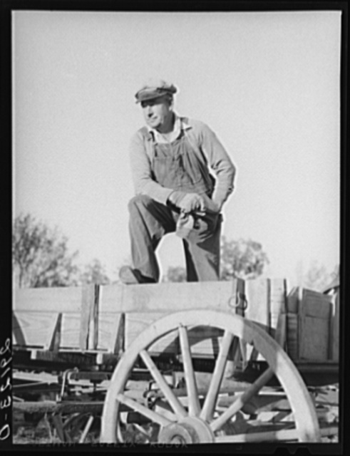 "Lawrence Corda, tiff miner, raises corn, oats, and lespedeza when he is not working at the diggings."" Washington County, Missouri"