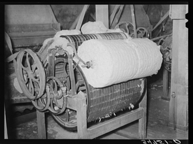 Linters, that cotton which clings to the seed, is removed and then formed into bats. Linters is of particular value in chemical industries because of its cellulosic content. Cotton seed oil mill. McLennan County, Texas