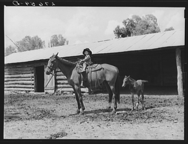Little girl with mare. Warren Brewster ranch, Montana