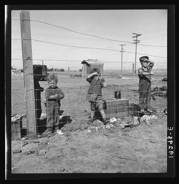 Living conditions for migratory children in private auto camp during pea harvest. Tent space fifty cents a week. Outskirts of Calipatria, California