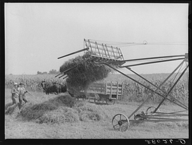 Loading hay with a jayhawk. Kimberley farm, Jasper County, Iowa