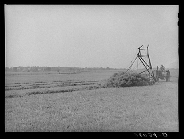 Loading hay with a jayhawk. Kimberley farm, Jasper County, Iowa