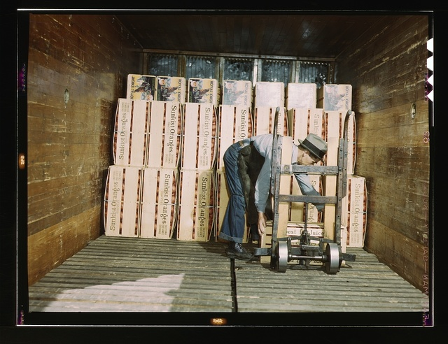 Loading oranges into a refrigerator car at a co-op orange packing plant, Redlands, Calif. Santa Fe R.R. trip