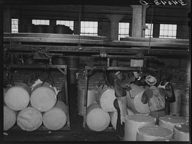 Loading round bales of cotton onto conveyer at compress. Houston, Texas. These are not full bales