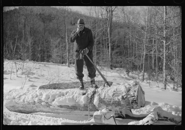Log being hauled by a tractor from woods to the road, where it will be loaded on a truck and taken to sawmill. Near Barnard, Vermont