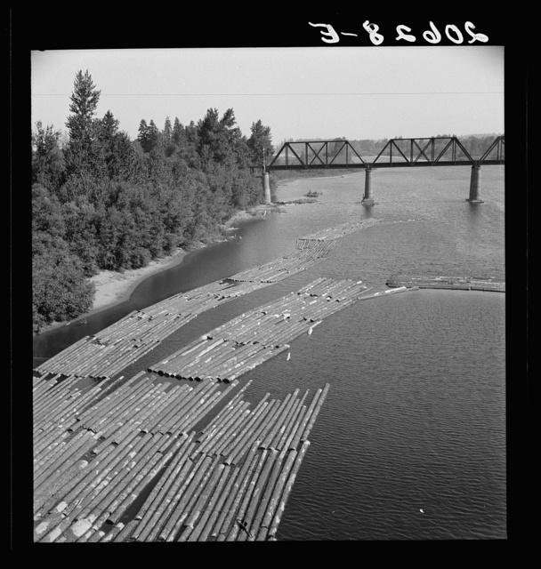 Log rafts on the Williamette River between Salem and Independence, Oregon