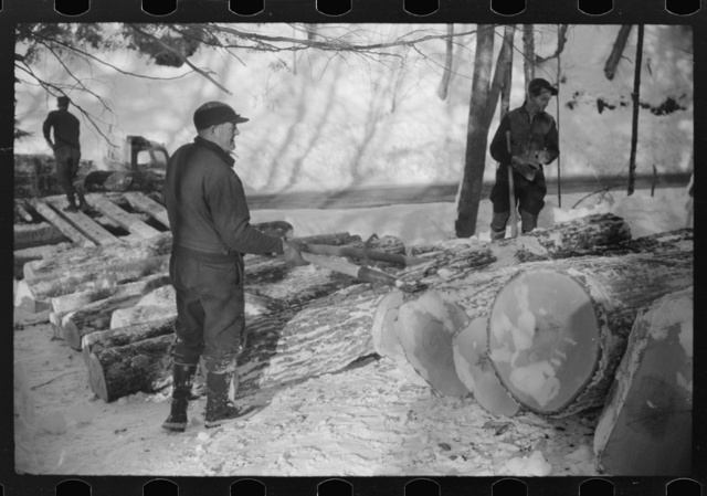 Logs hauled by tractor to the road where they are picked up by truck and taken to the mill, near Barnard, Windsor County, Vermont