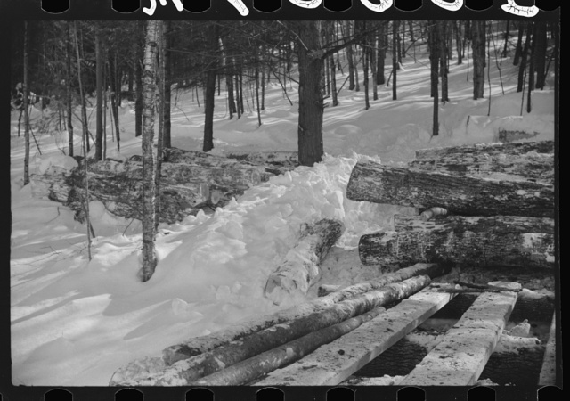 Logs hauled by tractor to the road where they are picked up by truck and taken to the mill. Near Barnard, Windsor County, Vermont