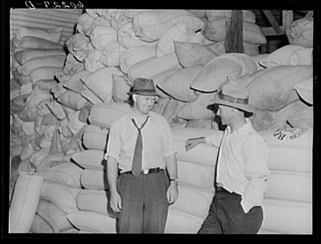 Manager of Border King co-op seed exchange talking with assistant. Williams, Minnesota