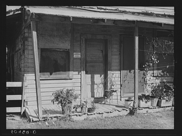 Many Negroes must continue to live in many condemned houses in Homestead, Florida