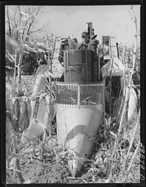 Mechanical corn picker. Grundy County, Iowa