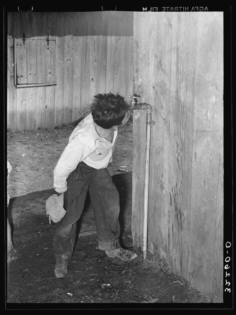 Mexican boy drinking out of water faucet. There were five of these faucets to supply water for about fifty Mexican families averaging five members each. They live in five units. Robstown, Texas