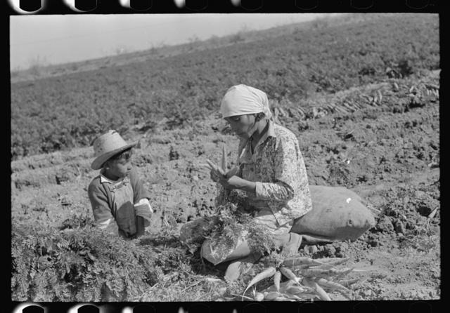 Mexican carrot worker with son, Edinburg, Texas