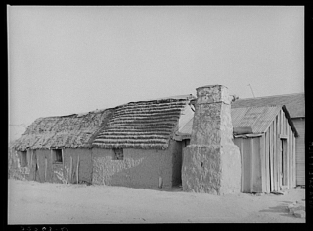 Mexican house. Crystal City, Texas. This house is adobe with palmetto straw roof