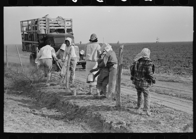 Mexican women arriving and unloading from truck at spinach field, La Pryor, Texas