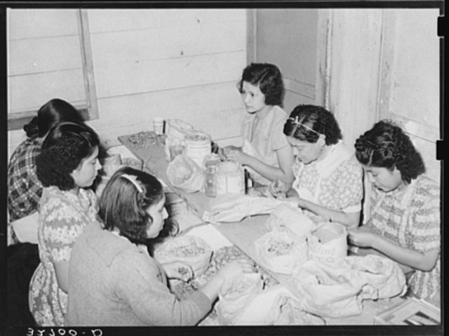 Mexican women separating meat from shells. Pecan shelling plant. San Antonio, Texas