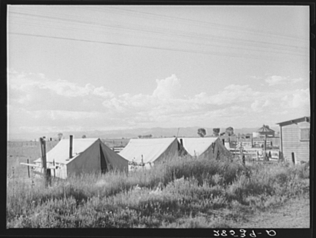 Migrant potato pickers' tents. Rio Grande County, Colorado