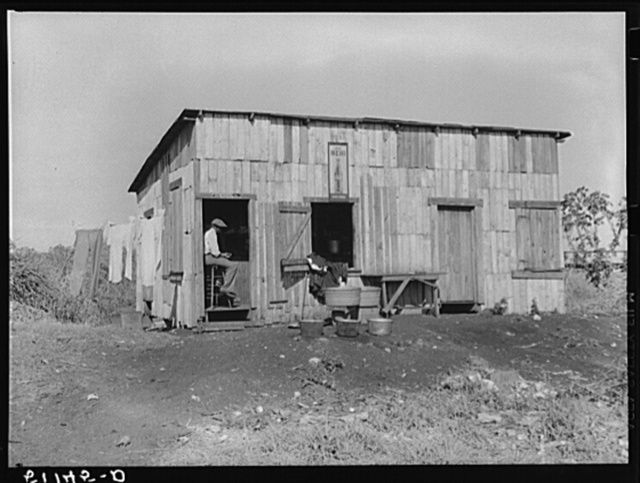 Migrant vegetable pickers. The tailor and cleaner to laborers near Lake Harbor, Florida