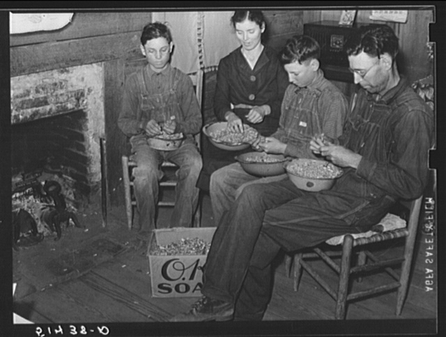 Mr. and Mrs. E.H. Wise and sons shelling peanuts around the fireplace for planting this year. They shell about fifty bushels, the yearly task of all families in this section at this season. Coffee County, Alabama